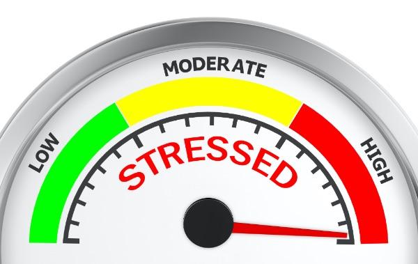stress niveau testen