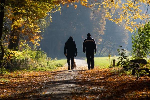verminder stress door wandelen